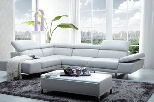 Italien leather sectionals